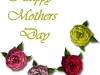 mothers-day-roses-card