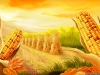 1287998257_470x353_corn-wallpaper-of-thanksgiving-2010